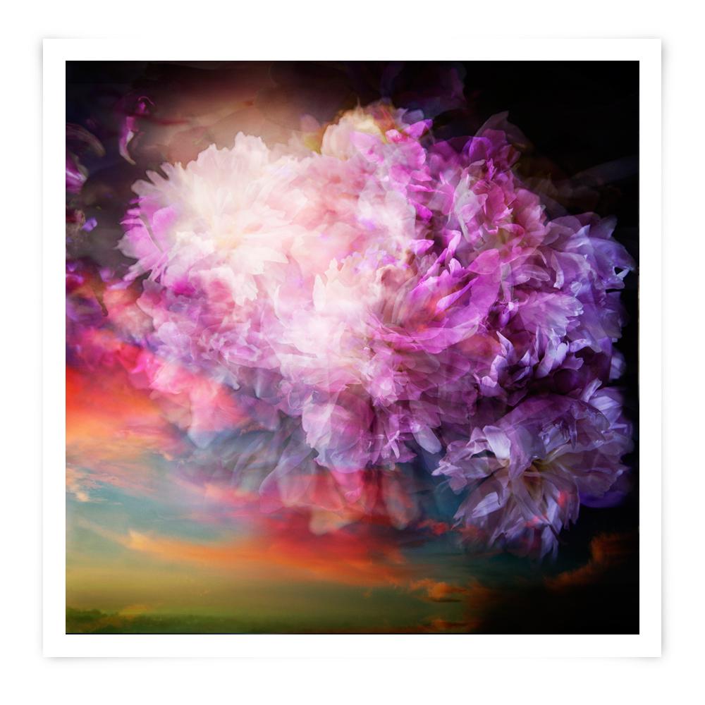 Flowerbom #1