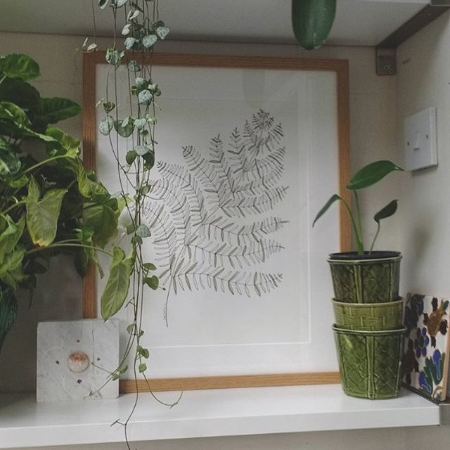 #botanical #greenleaf #drawing in its new home 😍