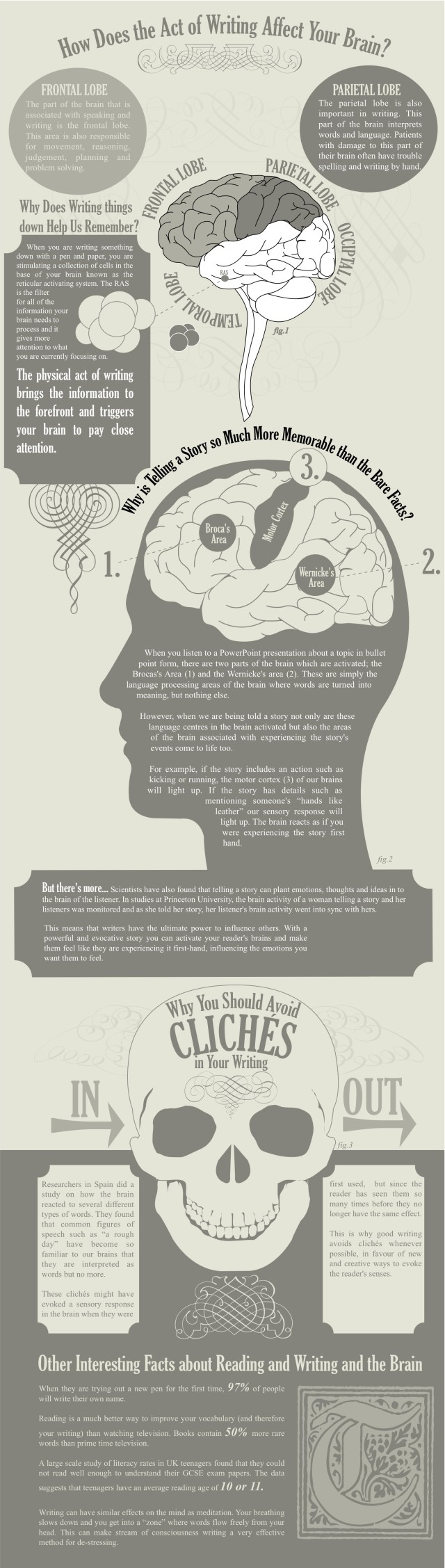 amazing-facts-about-writing-and-the-brain-640x2255.jpg