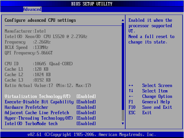 dell-c6100-bios-cpu-virt.ong.png