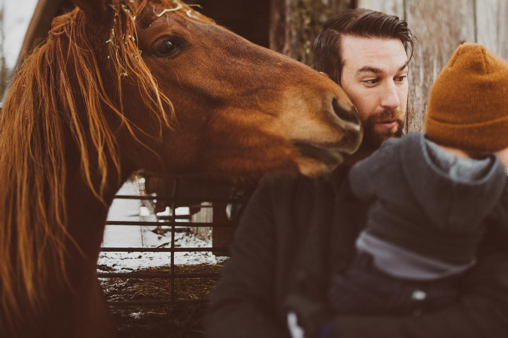 HorsesCaseys-49.jpg