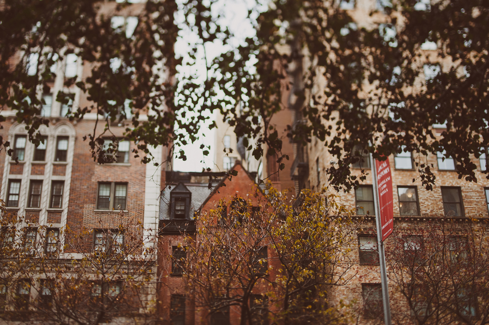 NYC-48.jpg