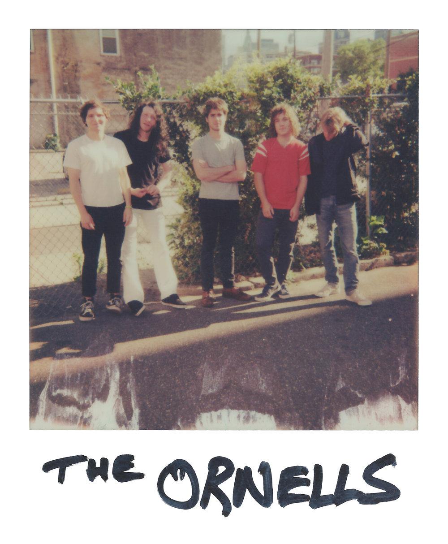 The Orwells outside Union Transfer in Philadelphia