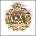 waaf badge.jpeg
