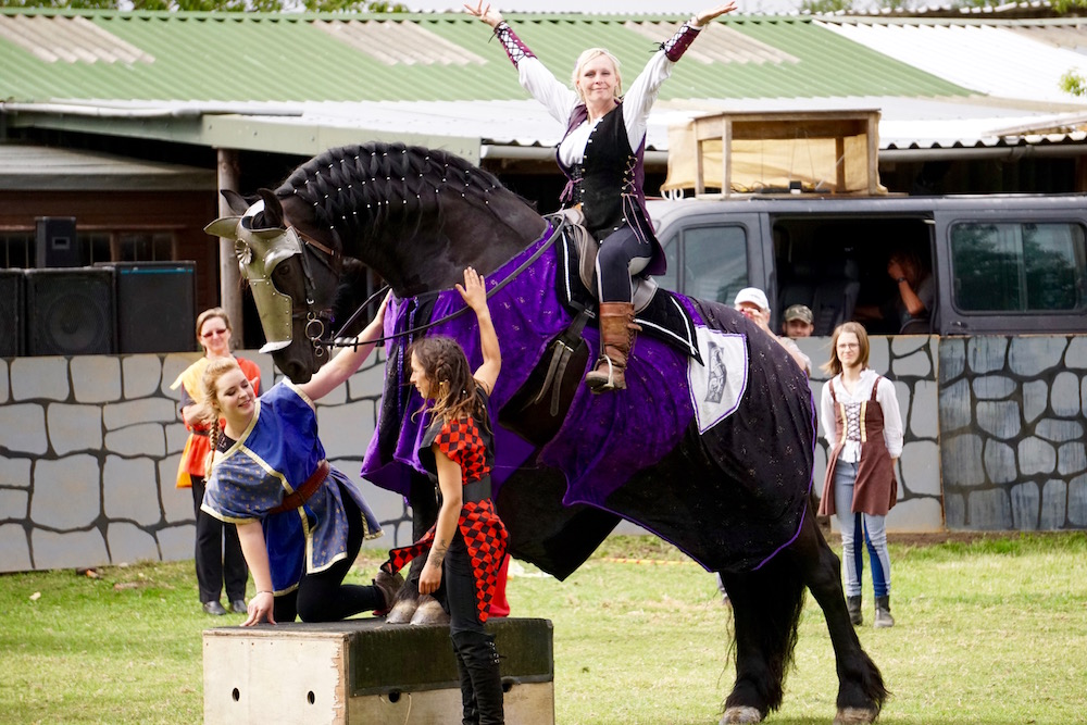 Medieval Tournament and Joust in Lincolnshire at the Northcote Heavy Horse Centre near Skegness 5.jpg