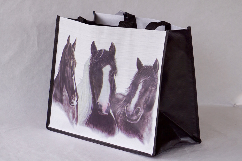 Friends eco-friendly reusable shopping bag!