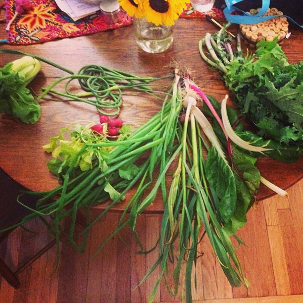 First batch from my #CSA!! So excited for dinner. Any suggestions for garlic scapes?!