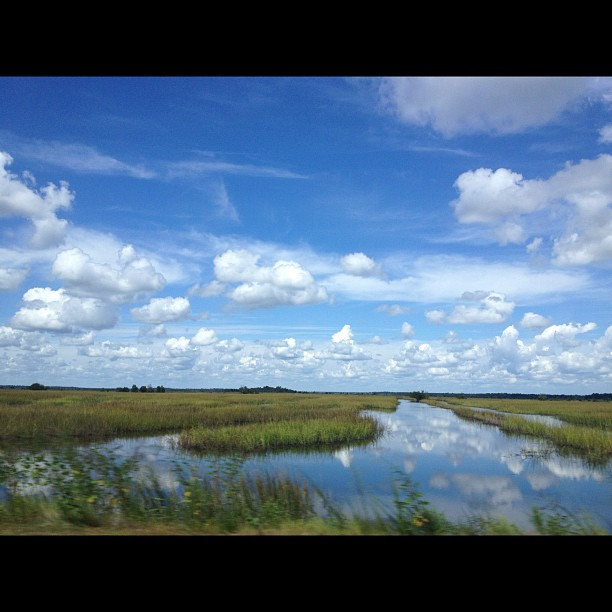 Driving to #savannah #southcarolina #roadtrip #nofilter  (Taken with  Instagram )