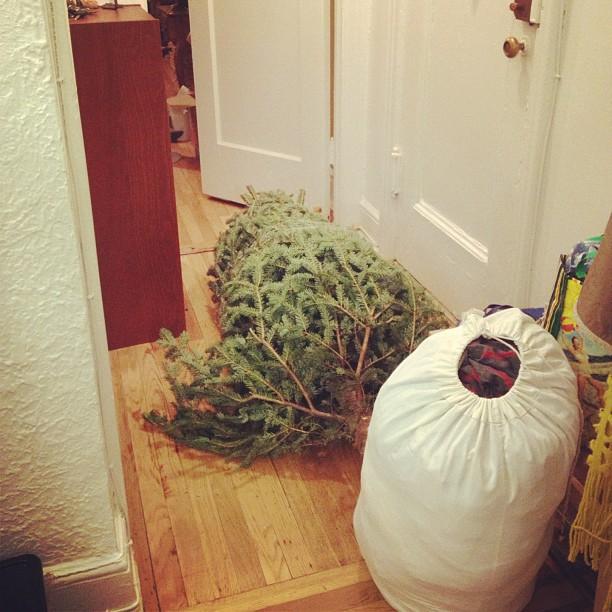Phase 1… #christmas!!!