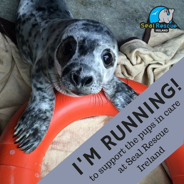 Please post this image to your social media sites tagging Seal Rescue Ireland to let your friends know you're running for us!