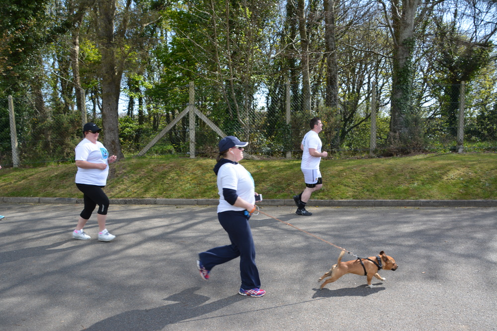 people - 2016 - earth day 5k - runners - dog - run - running.JPG