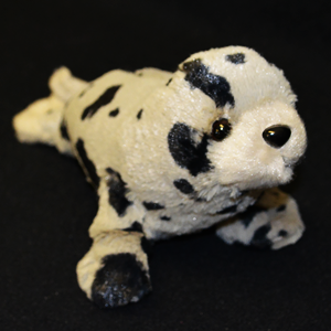 Harbour Seal Teddy.png