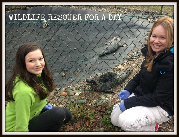 Rescuer for a day.jpg