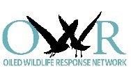 logo OWRI.jpg