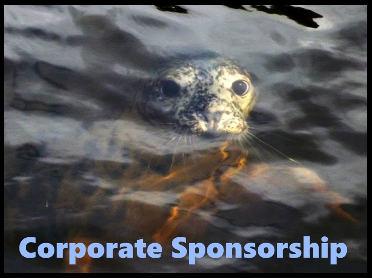 corporate sponsor.jpg
