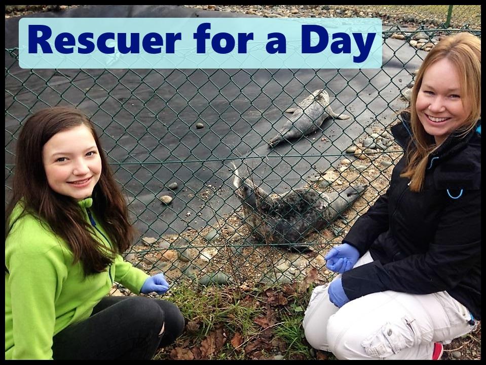 rescue day.jpg
