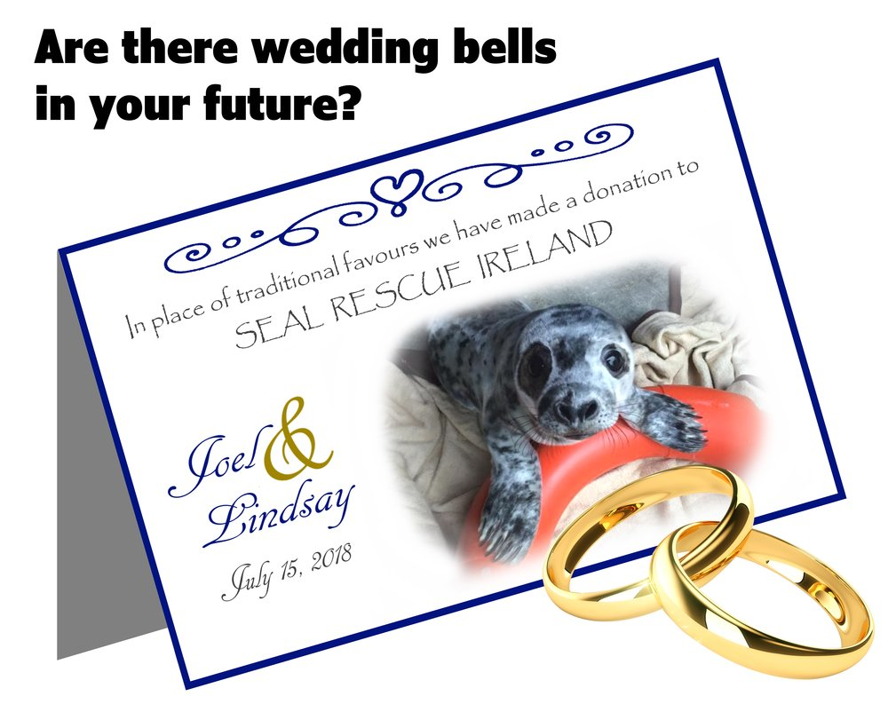 Wedding Favours — Seal Rescue Ireland