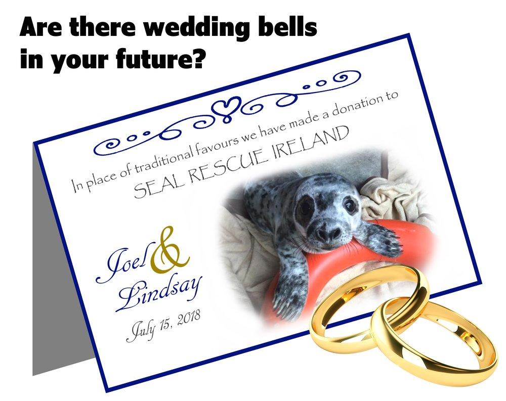 Wedding Favours — Seal Rescue Ireland