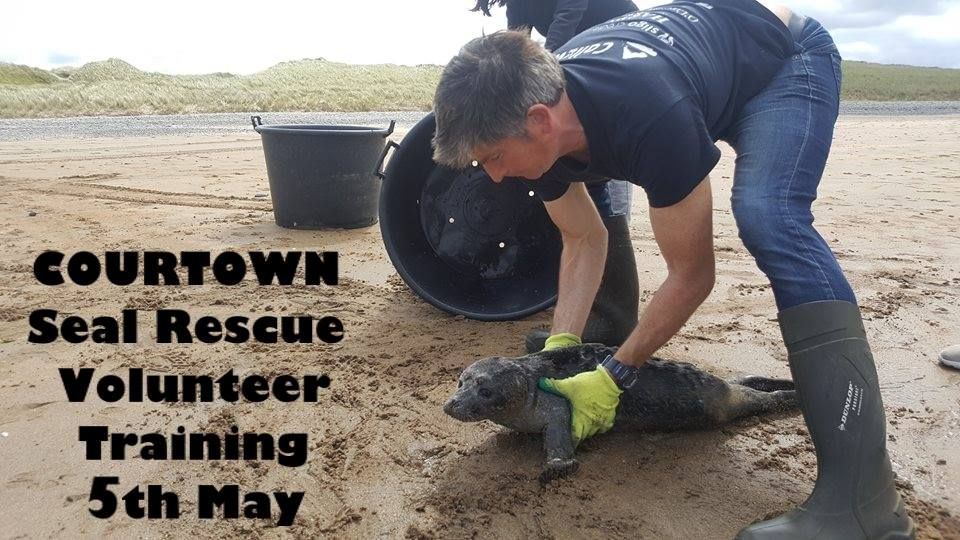 seal rescue training.jpg