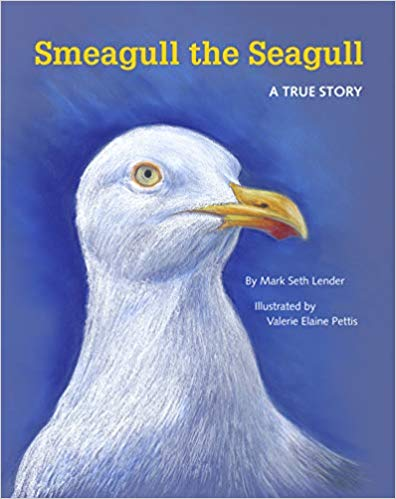 First Place: Smeagull the Seagull