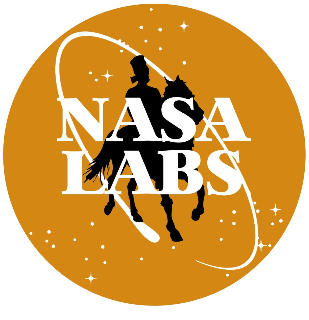 Nasa Labs Logo Trimmed for Site.jpg