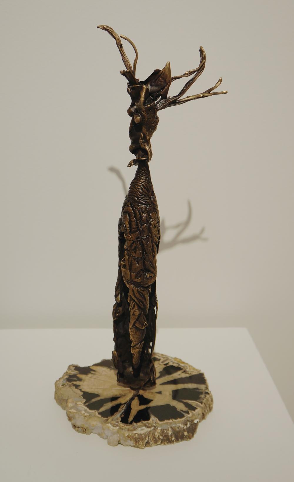 David Aschenbrener, Elk Totem
