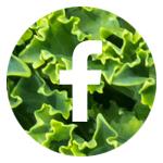 facebook circle.jpg