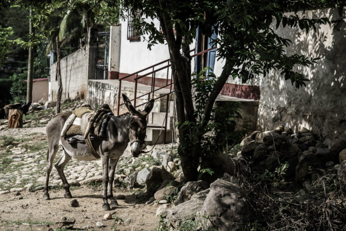 Guatemala-Day-4-by-Enrique-Urdaneta-675x450.jpg