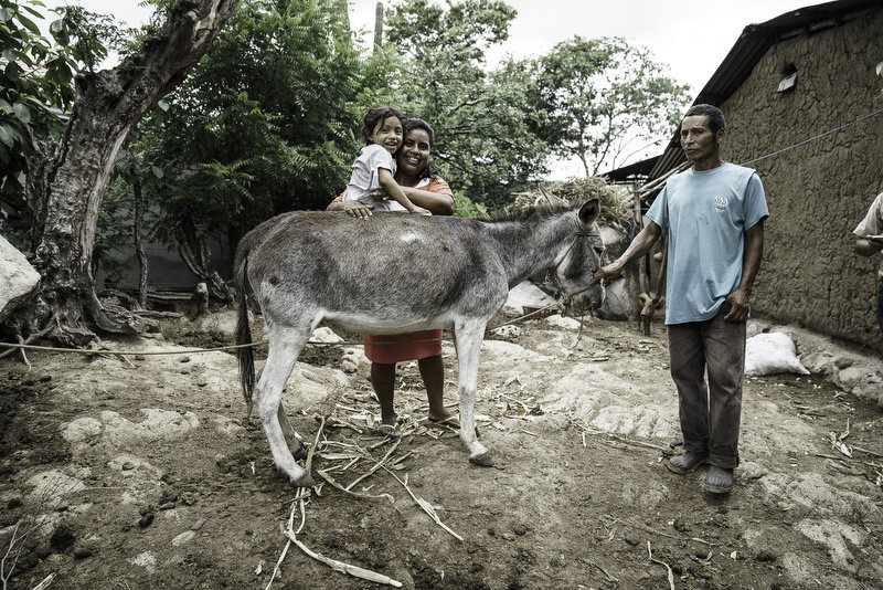 NJ.COM  Polo player, Nic Roldan helps working equines in Guatemala.  Photos by Enrique Urdaneta