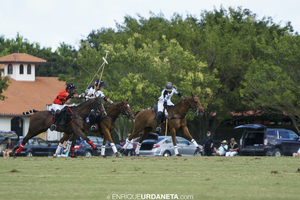 Polo_by_Enrique_Urdaneta_20170112-1275.jpg