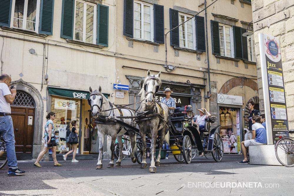 Lucca_Italy_by-Enrique-Urdaneta-20170616-5.jpg