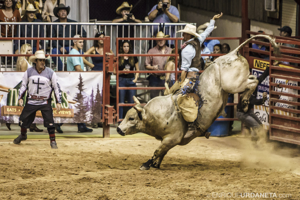 Rodeo_Davie_by_Enrique_Urdaneta_3.jpg