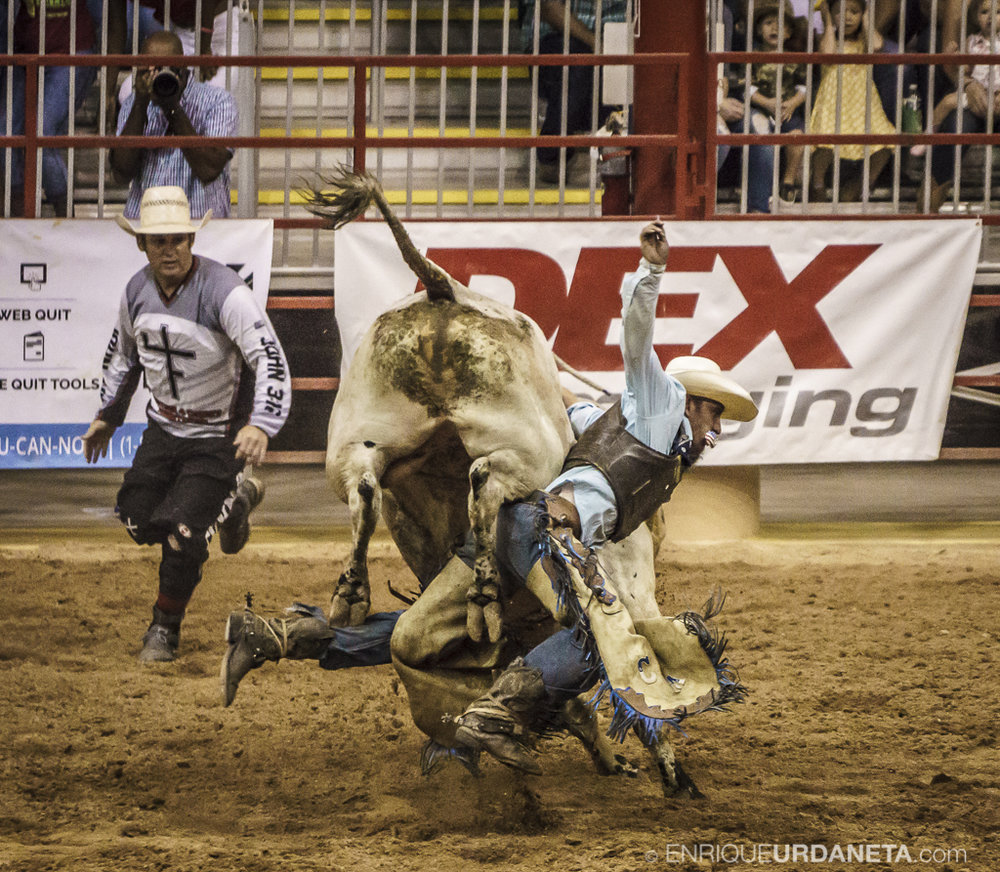 Rodeo_Davie_by_Enrique_Urdaneta_4.jpg