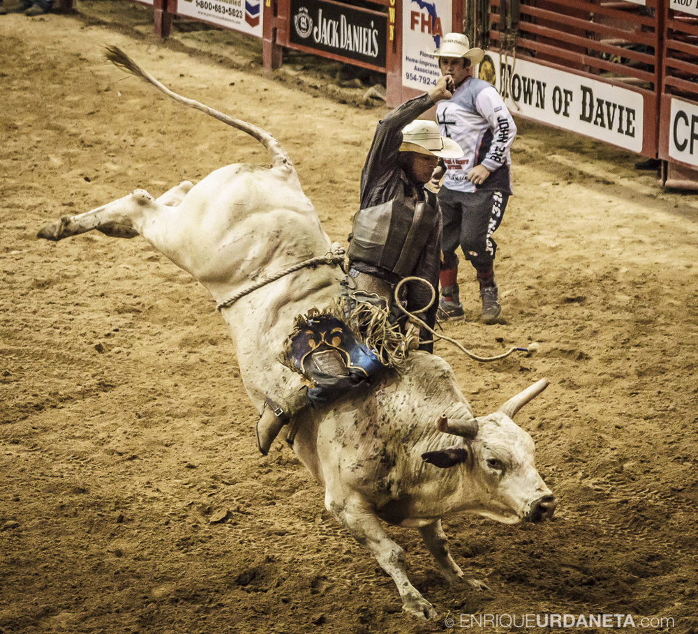 Rodeo_Davie_by_Enrique_Urdaneta_8.jpg