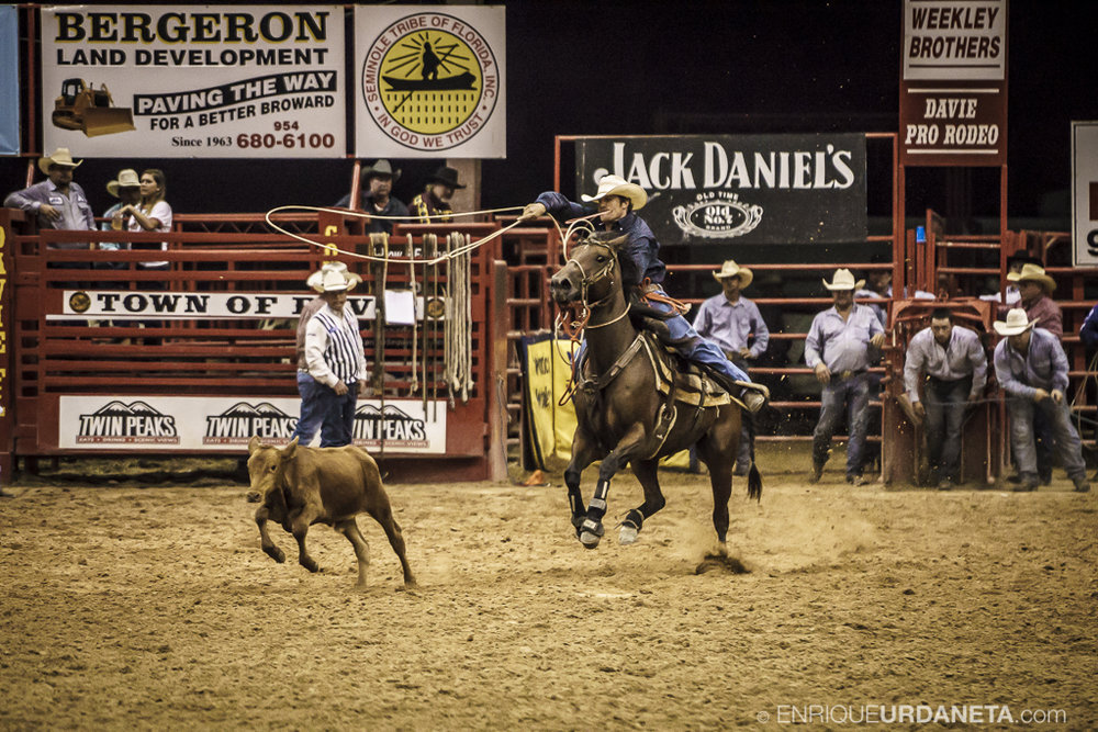Rodeo_Davie_by_Enrique_Urdaneta_16.jpg