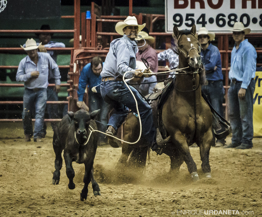 Rodeo_Davie_by_Enrique_Urdaneta_18.jpg