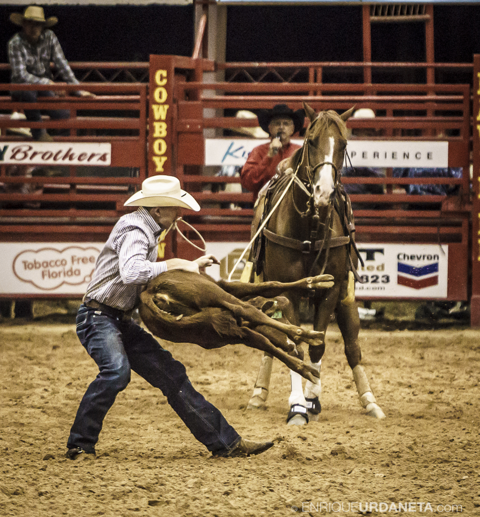 Rodeo_Davie_by_Enrique_Urdaneta_23.jpg