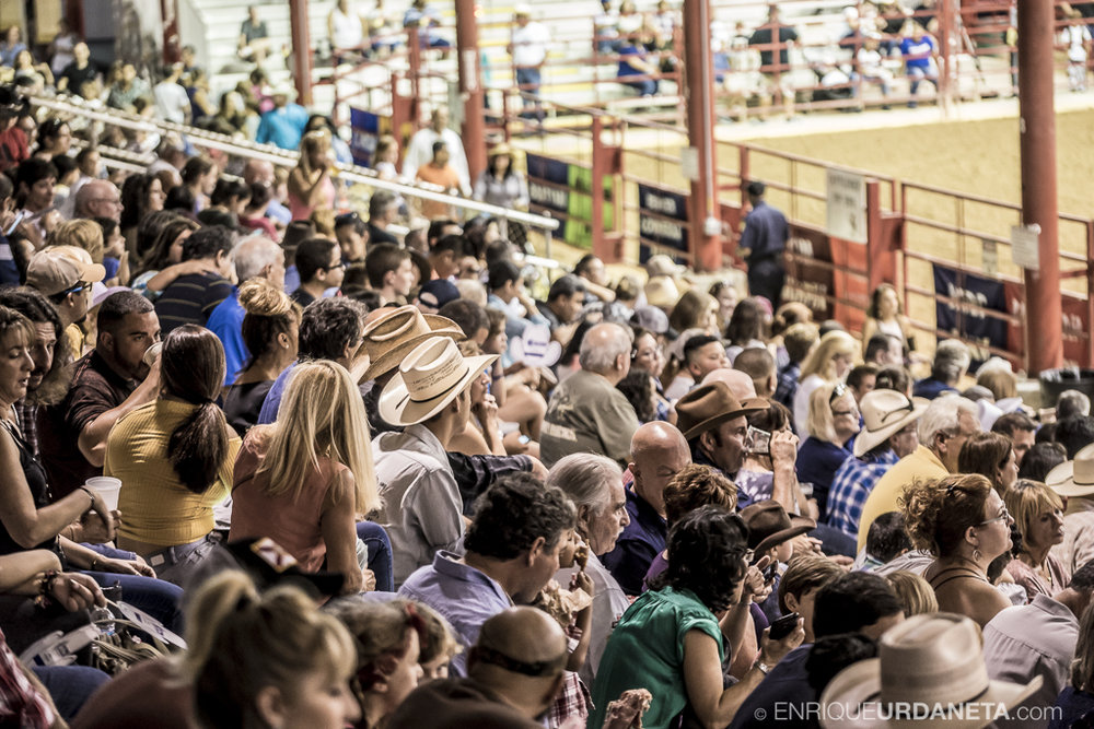 Rodeo_Davie_by_Enrique_Urdaneta_24.jpg