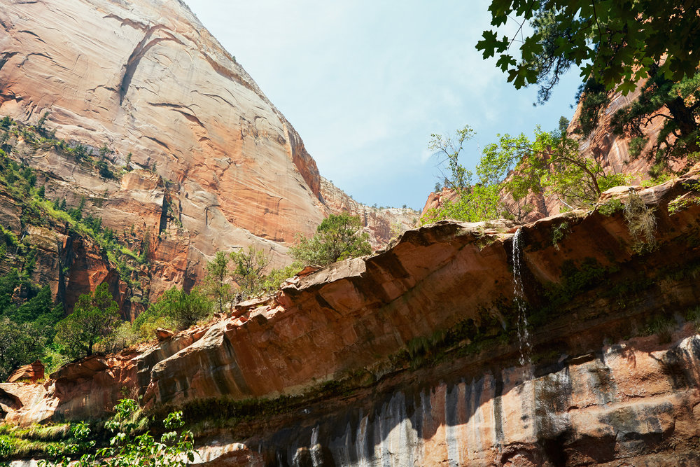 Emerald Pool Trail - Zion National Park, UT