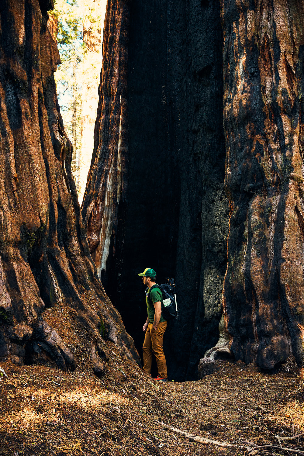 KINGS_CANYON_SEQUOIA_2018_0390_v1.jpg
