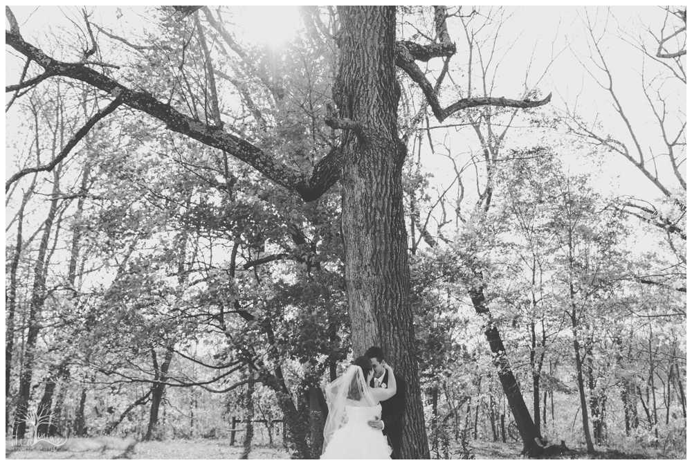 hazel-lining-photography-wedding-portrait-buckscounty-pennsylvania-stephanie-reif_0318.jpg