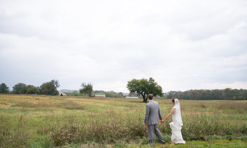 Whitehall Estate and Winery Wedding bride and groom Photo