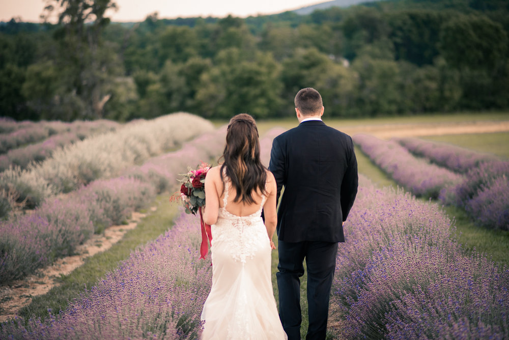 Bride and groom walking through lavender field