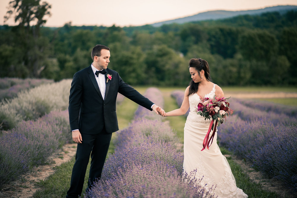 Bride and groom holding hands in lavender field