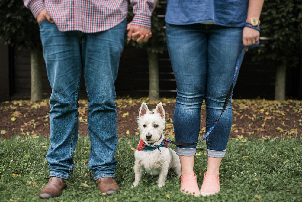 Dog standing between couple