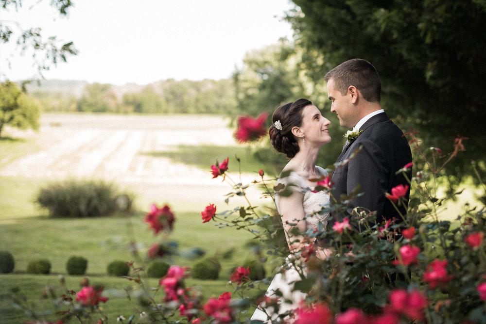 Bride and groom behind rose bush