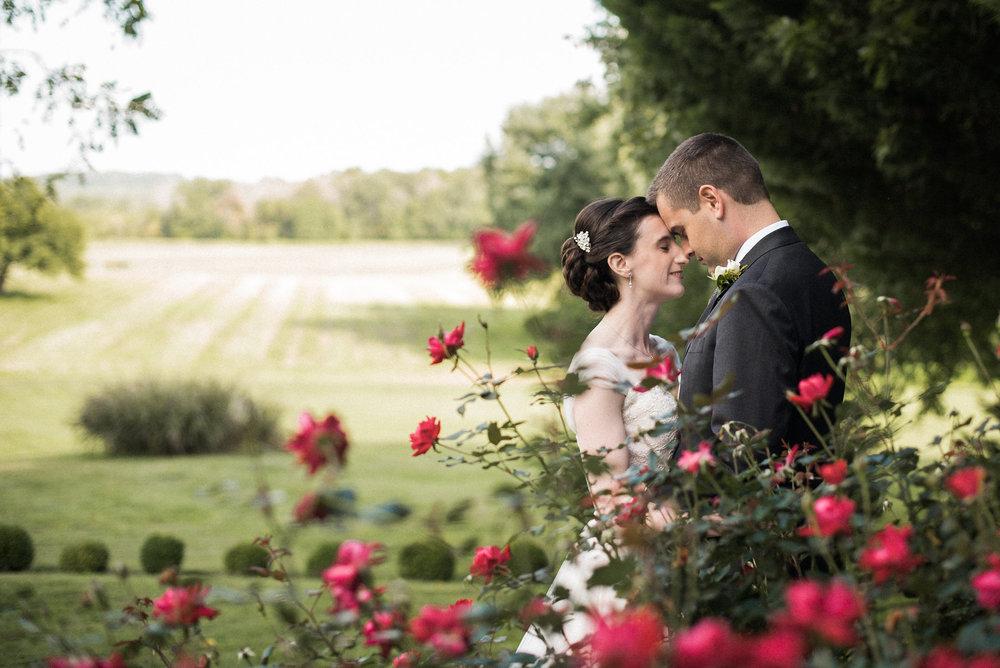 Bride and groom embracing behind rose bush