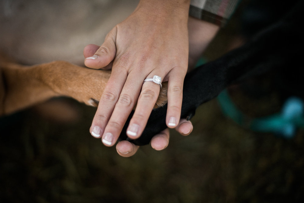 Dog paws and engagement ring