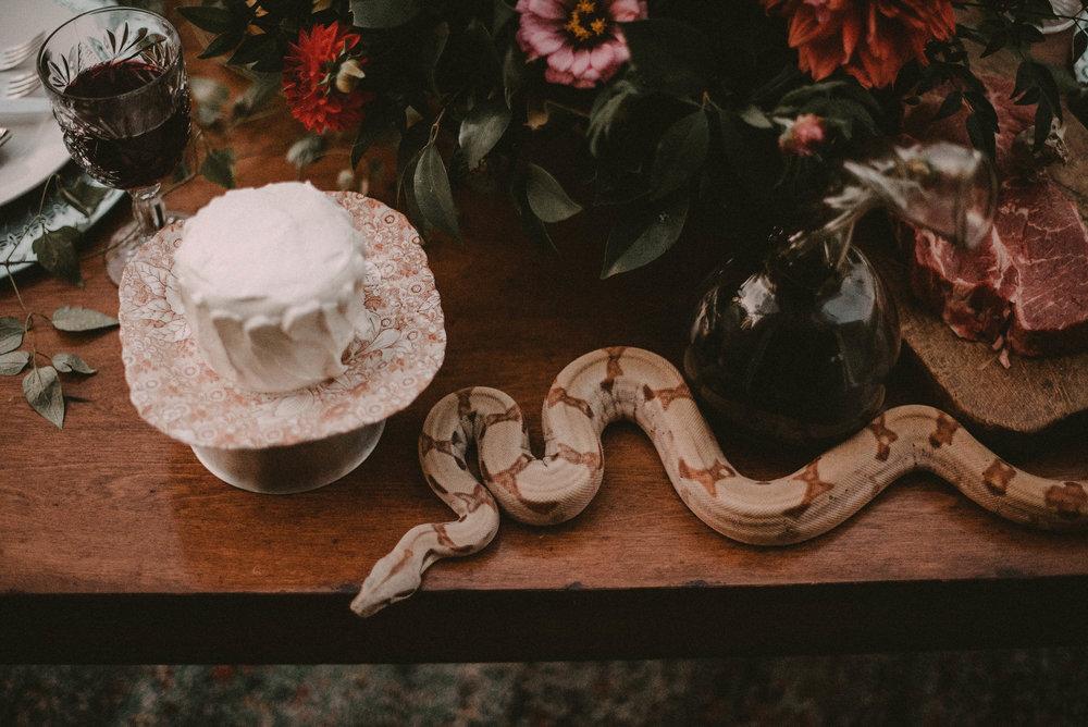 Snake with a wedding cake