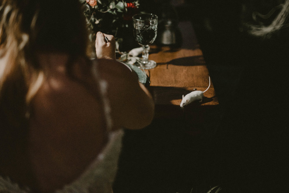 Mouse on table beside bride